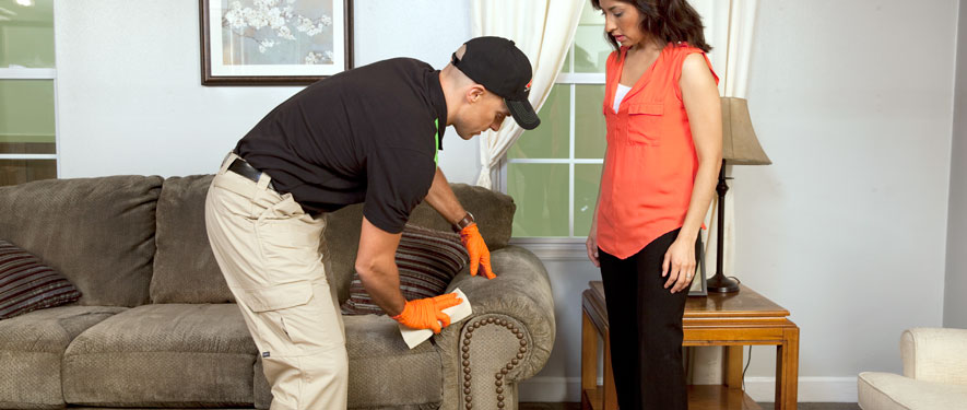 Clinton, IL carpet upholstery cleaning